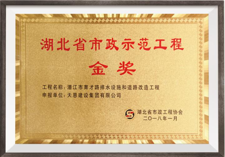 2018年湖北省市政示范工程金奖