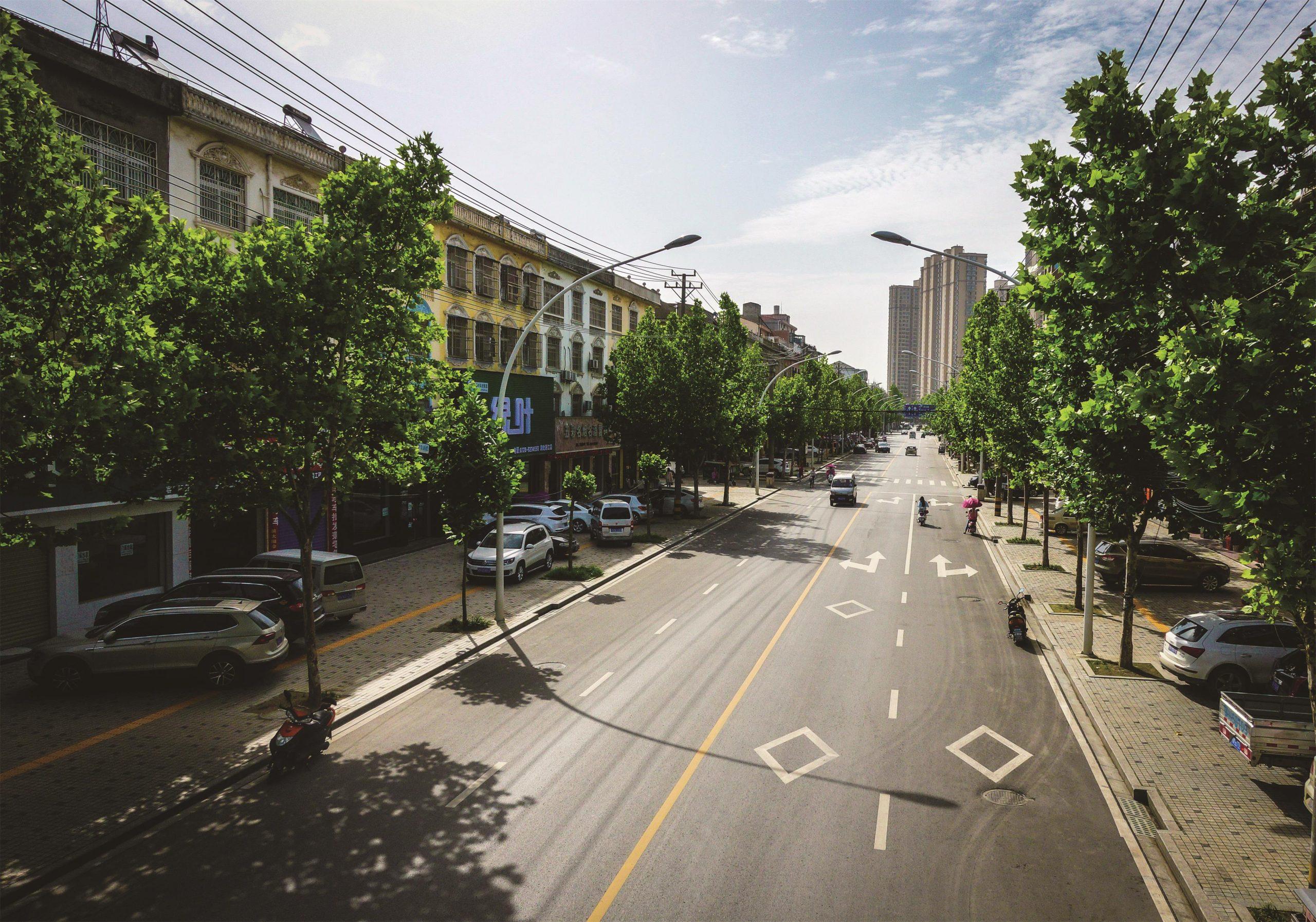 潜江市育才路排水设施和道路改造工程